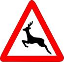 Panneau-danger-passage-animaux-sauvages