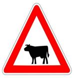 Panneau-de-danger-passage-animaux-vaches